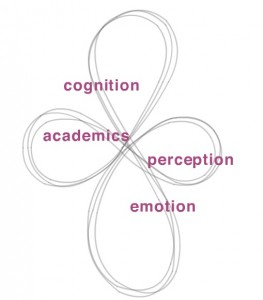 Key components of NILD Educational Therapy - cognition, perception, emotion, academics